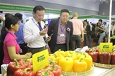 Les dirigeants singapouriens intéressés par l'importation de fruits et légumes du Vietnam