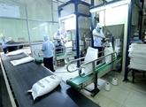 Opportunités d'exportations de riz vers l'Égypte