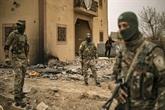 Une cinquantaine d'éléments de l'EI tués par des frappes aériennes