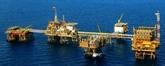 Vietsovpetro salue le premier flux de pétrole du gisement de Ca Tâm