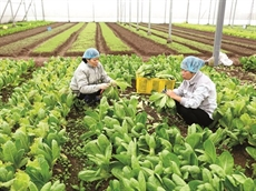 Vers une agriculture durable
