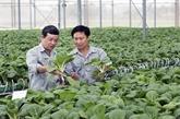 Promouvoir l'investissement dans les produits agroalimentaires