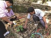 Les crédits épaulent les habitants démunis à Kon Tum