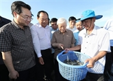 Kiên Giang appelée à mieux exploiter ses atouts