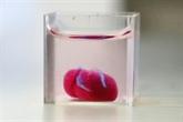 Des scientifiques présentent un prototype de cœur en 3D à partir de tissu humain