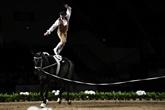 Équitation: la voltige entre dans la danse
