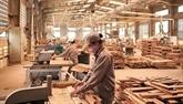 Produits forestiers: hausse de 18% des exportations sur les quatre premiers mois