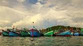 Binh Dinh est déterminée à lutter contre l'exploitation illégale de produits aquatiques