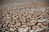 Une étude révèle les conséquences de la sécheresse en Asie du Sud-Est