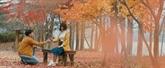 Film : Promesse d'automne au début de l'été
