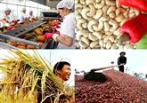 Exportations des produits agricoles, sylvicoles et aquatiques en baisse au 1er trimestre
