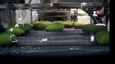Les exportations de fruits et légumes ont chuté de 9,3% au premier trimestre