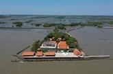 Replanter la mangrove contre l'érosion et pour sauver un temple