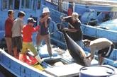 Quang Tri renforce la surveillance satellitaire des bateaux de pêche