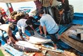 Le Vietnam souhaite un développement durable de la mariculture