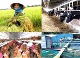 Accélérer l'autonomisation économique des femmes dans l'agriculture
