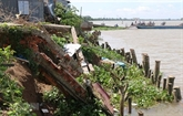 Plus de 6.000 ménages de Dông Thap doivent être relogés
