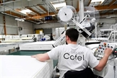Export et numérique, planches de salut pour les matelassiers français