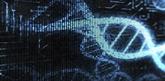Le séquençage et l'intelligence artificielle pour mieux dépister les maladies