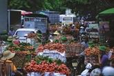 Exporter des litchis et des prunes