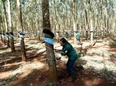 Le Vietnam investit 150 millions de dollars à l'étranger en quatre mois