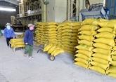 Regard rétrospectif sur 30 ans d'exportation vietnamienne de riz