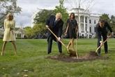 L'arbre symbole de l'amitié Trump - Macron est mort