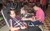 Une journée du don de sang à Ninh Binh