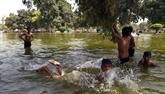 Inde: la chaleur extrême tue près de 50 personnes dans le Nord