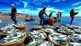 Journée d'alliance d'entreprise dans l'aquaculture à Cà Mau