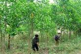 Le Premier ministre ordonne un examen national de l'utilisation des terres