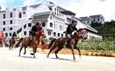 Lào Cai: ouverture de la course hippique
