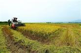 Opportunités et défis pour l'agriculture