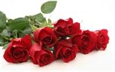 La rose dans la culture vietnamienne
