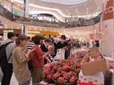 Vietnam - Japon: développement de la coopération économique