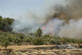 Espagne: un incendie hors de contrôle en Catalogne, 6.500 hectares ravagés