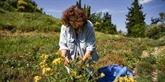 Dans le golfe de Corinthe, d'autres façons de survivre à la crise