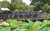 Le PM présent au Festival de lotus Japon - Vietnam