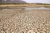 L'Inde suffoque sous la chaleur, jusqu'à 50°C