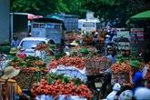 Les exportations de fruits et légumes en hausse de 10,3% en cinq mois