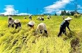 Vietnam - Belgique: le partenariat réussi pour le développement