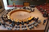Le Vietnam prépare soigneusement pour le poste de membre non permanent du Conseil de sécurité