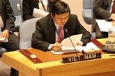 Des amis étrangers soutiennent le Vietnam pour devenir un membre non permanent du Conseil de sécurité