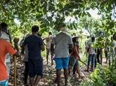 Au Bénin, un camp d'entraînement intensif à l'agriculture bio
