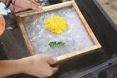 L'artisanat du papier dó à Hoà Binh retrouve ses couleurs