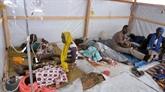 Cameroun: le bilan du choléra passe à 93 morts dans le Nord