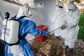 Début d'une campagne de vaccination de masse contre la rougeole