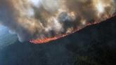 Des incendies de forêt sans précédent dans l'Arctique depuis début juin
