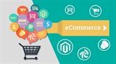 Approbation des projets de loi sur l'e-commerce et la protection des consommateurs