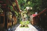 L'hébergement homestay en plein boum au Vietnam
